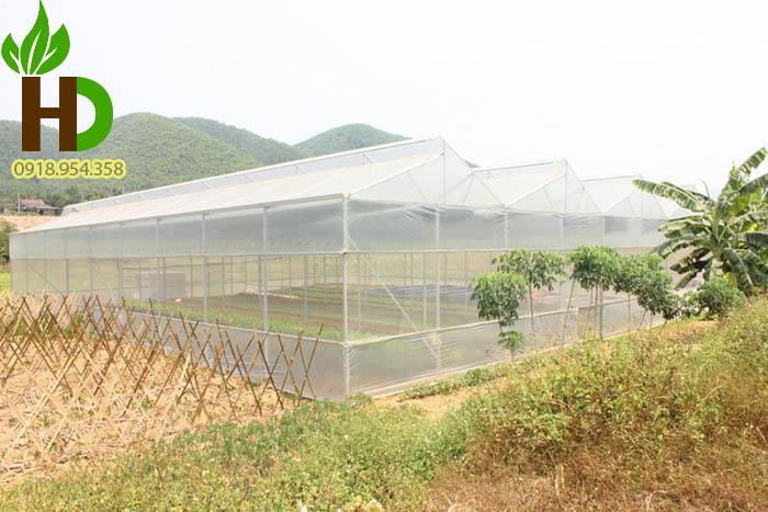 Ứng dụng của lưới chắn côn trùng 50 mesh trong nông nghiệp